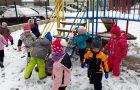 Žabice na snegu